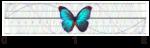レーザーポインターで考える「ピタゴラスの定理」
